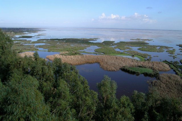 Marismas del Parque Nacional de Doñana