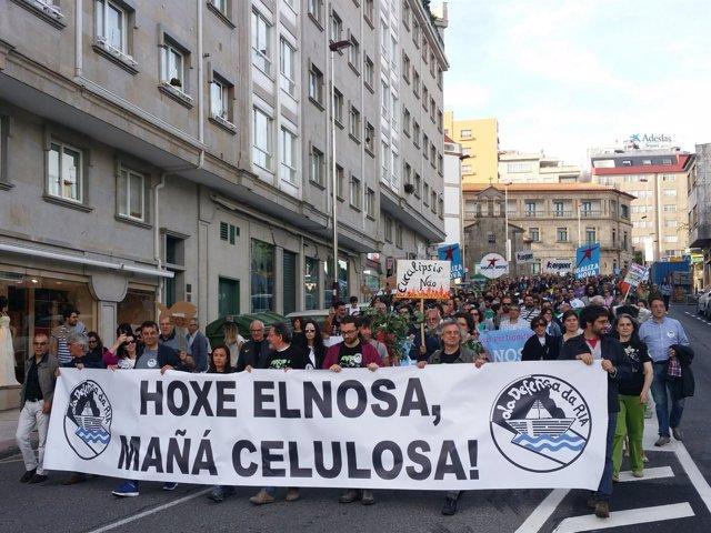Marcha contra la celulosa en Pontevedra
