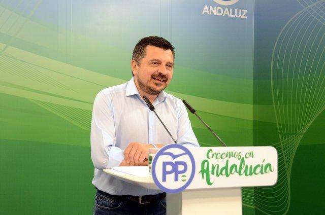 El vicesecretario del Organización y Formación del PP-A, Toni Martín