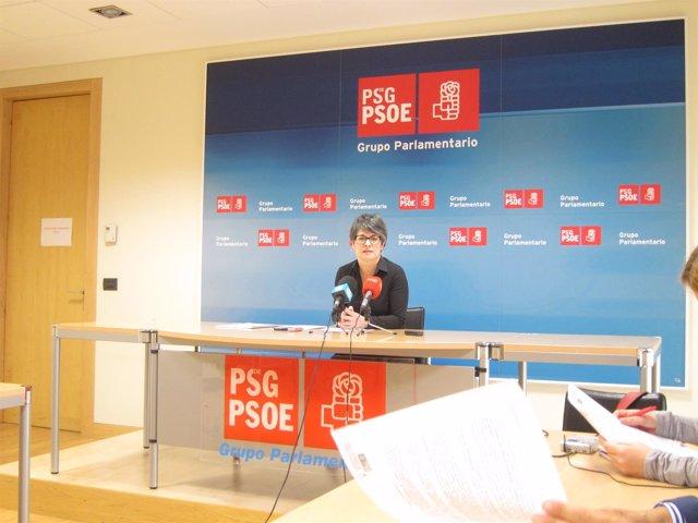 Patricia Vilán (PSdeG) en rueda de prensa