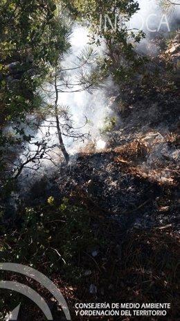Incendio declarado en Segura de la Sierra.