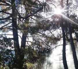 El Infoca da por controlado el incendio declarado en las faldas de El Yelmo, en Segura de la Sierra (Jaén)