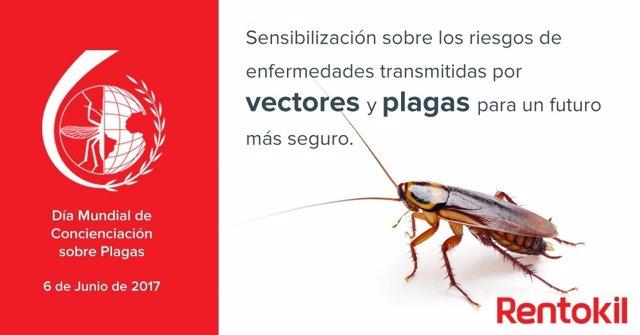 Cucaracha en el Día Mundial de concienciación de plagas