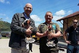 La Diputación reintroduce en Montaña Alavesa dos pollos de un águila amenazada para reforzar la población de estas aves