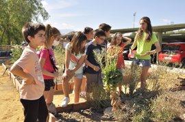 La Universidad de Jaén celebra el Día Mundial del Medio Ambiente con talleres para escolares en su eco-huerto