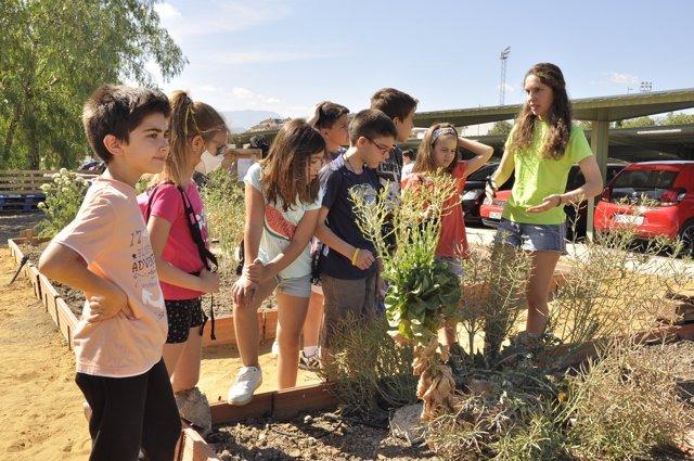 Alumnado en el eco-huerto de la UJA