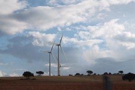 Gas Natural Fenosa invertirá 200 millones en generación eólica