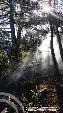 Foto del incendio
