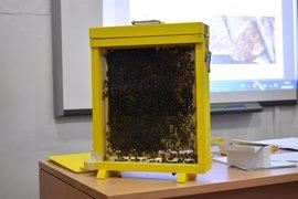 El CPEI de la Diputación de Badajoz organiza una jornada formativa sobre el rescate por abejas y avispas