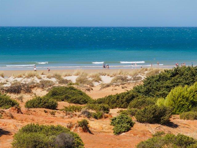 Playa de La Barrosa, lugar de celebración del festival