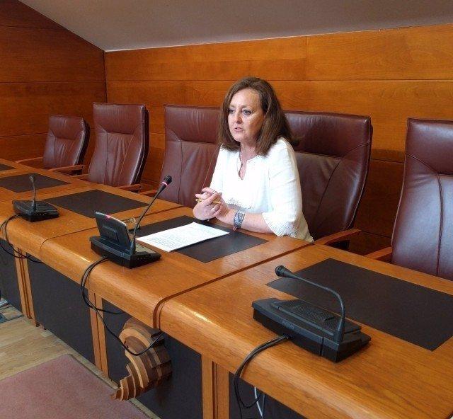 Mercedes Toribio, portavoz de Educación del PP