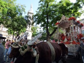 Unidos Podemos pregunta en el Congreso por el trato a animales en El Rocío