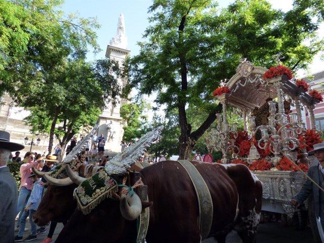 Salida de la hermandad del Rocío de Sevilla
