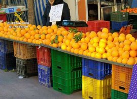 Detenidas cinco personas por sustraer más de 1.000 kilos de naranjas de explotaciones de Murcia