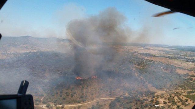 Incendio declarado en un paraje de El Almendro.