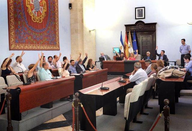 Pleno del Ayuntamiento de Jerez
