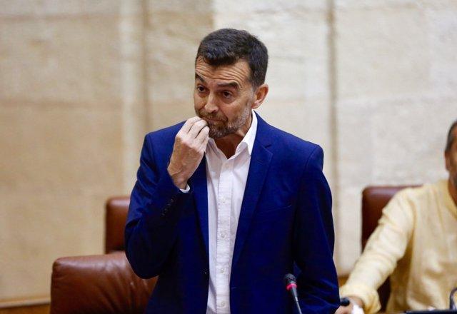 El portavoz parlamentario de IULV-CA, Antonio Maíllo, en el Parlamento