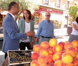 """Cs espera que el PP cumpla """"de manera inmediata"""" sus acuerdos y fuerce la salida de Alfonso Centeno"""