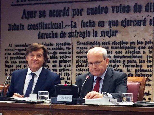 José Ramón Lete, presidente del CSD, en una comparecencia en el Senado