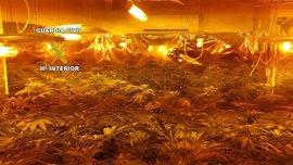 Desarticulado con 16 detenidos un supuesto entramado dedicado a introducir cocaína en la provincia de Jaén