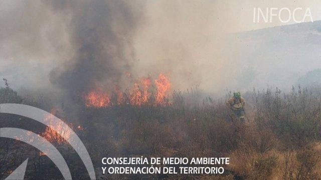 Efectivos del Infoca trabajan en la extinción de un incendio en Ayamonte