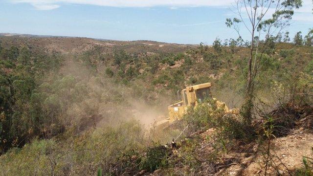 Incendio forestal en El Granado (Huelva)