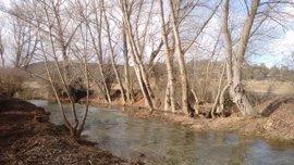 La CHD concluye dos actuaciones de mantenimiento y mejora en los cauces de los ríos Pedrajas y Abión, en Soria