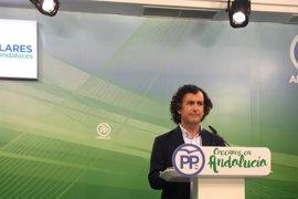 """PP-A urge a la Junta un pacto andaluz contra la violencia de género ante los """"fracasos"""""""