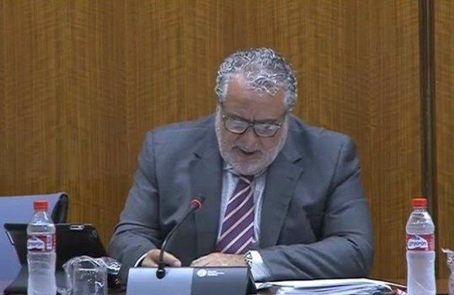 Joaquín Durán, director de Canal Sur, en sede parlamentaria