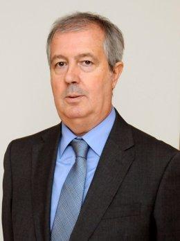 Luis Mayero, nuevo presidente de la fundación