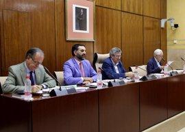 La Junta pide al Gobierno abordar de manera conjunta el problema de abusos de turistas británicos en hoteles