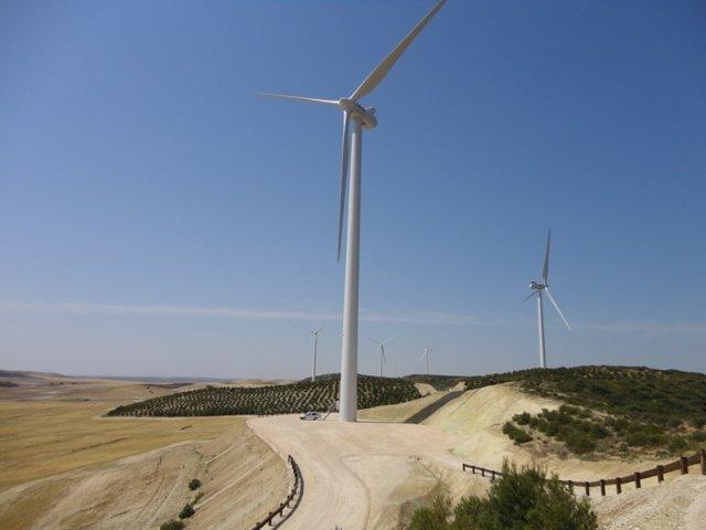 Parque eólico Acampo