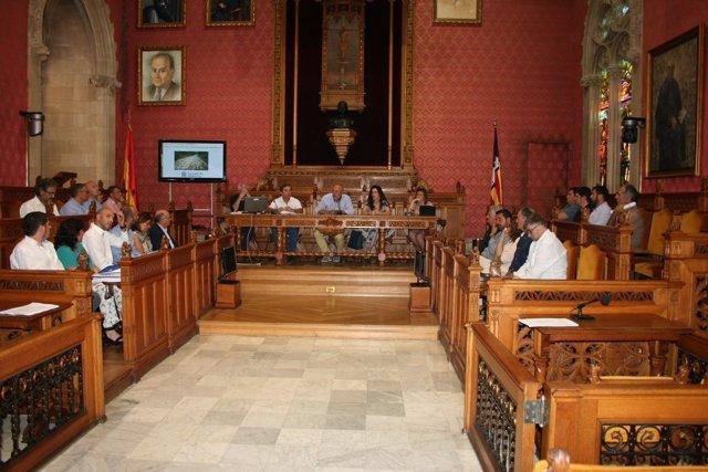 Ensenyat presenta la ley de caminos a los ayuntamientos