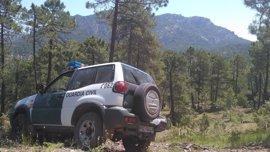 La Guardia Civil rescata en Siles (Jaén) a una excursionista que se había perdido y caído por un desnivel