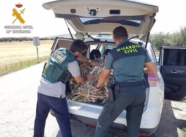 Los agentes inspeccionan el maletero del vehículo