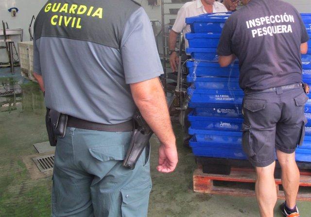 Intervienen en Isla Crisina (Huelva) pescado sin etiquetar.