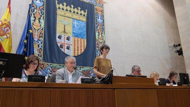 Las Cortes muestran su apoyo a los refugiados.