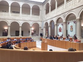 El Parlamento pide desligar las direcciones de los hospitales públicos de los cargos políticos