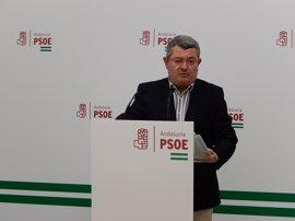 """El PSOE-A asegura que mantiene su """"voluntad de entendimiento"""" con Cs sobre el Impuesto de Sucesiones"""