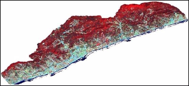Imagen de satélite de bosques en el Maresme (Barcelona) de 2016