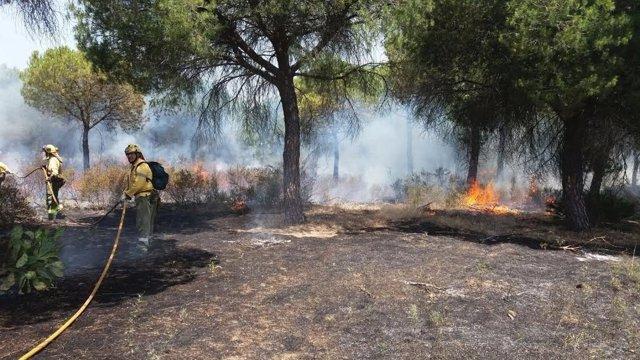 Efectivos del Infoca en la extinción de un incendio en Aljaraque.
