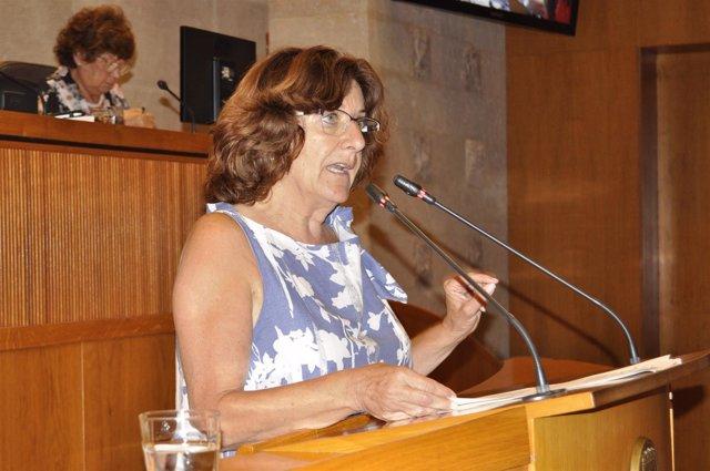 La consejera María Victoria Broto, en su comparecencia en el pleno de las Cortes