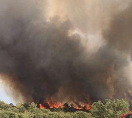 El viento cambiante condiciona los trabajos contra el fuego de Almoguera