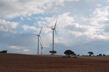 El Consejo de Ministros aprueba este viernes la nueva subasta de renovables por 3.000 MW