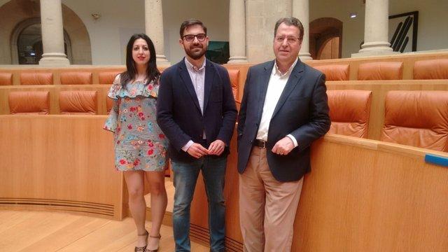 Diputados del Grupo Municipal Ciudadanos