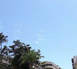 El alcalde de Murcia confirma que no hay nadie debajo del ficus de Santo Domingo y que solo hay dos heridos leves