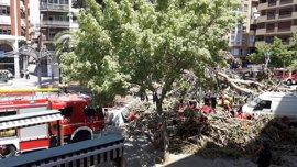 Más de 120 agentes, sanitarios y voluntarios han actuado de manera inmediata ante la caída de la rama del ficus