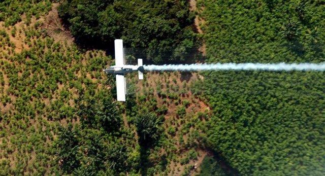 Fumigación campos de coca Colombia