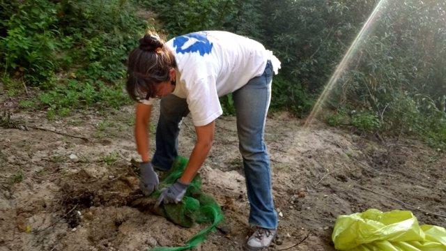 Un voluntario limpiando un paraje.