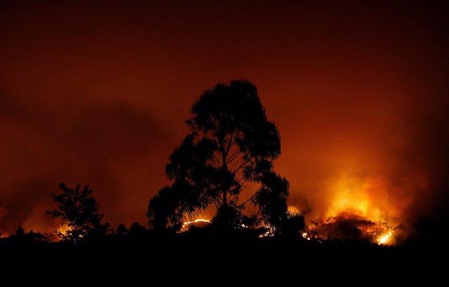 Incendio en Pedrogao Grande, Portugal, junio 2017